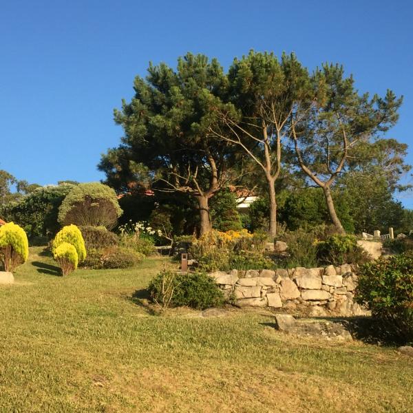 garden galicia