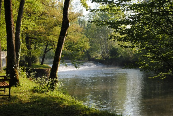 Banks of the Dordogne river